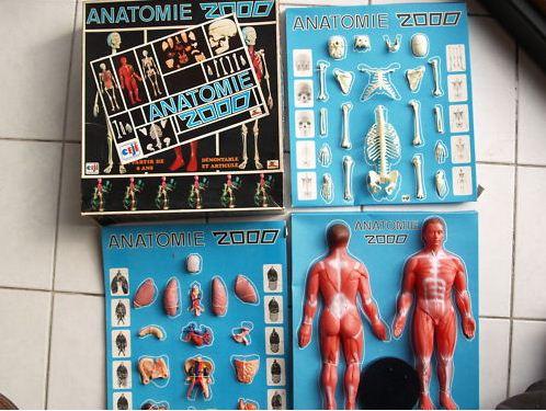 Anatomie 2000