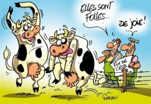 Crise de la vache folle